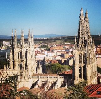 catedral desde el castillo